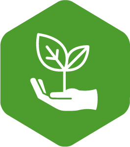 Employee Growth icon
